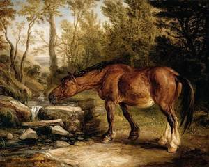 Romanticism painting reproductions: A Horse Drinking at a Stream 1838