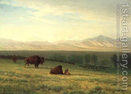 Buffalo on the Plains, c.1890 by Albert Bierstadt - Reproduction Oil Painting