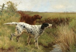 Famous paintings of Domestic Animals: An English setter and an Irish setter in a landscape 1901