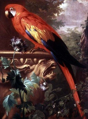 Famous paintings of Parrots: Scarlet Macaw in a Landscape
