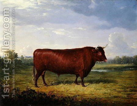 Portrait of a Brown Bull, 1834 by Henry Calvert - Reproduction Oil Painting