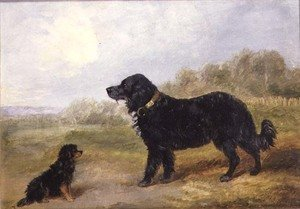 Naturalism painting reproductions: Dogs