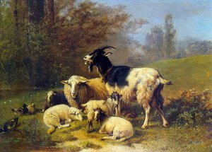 Sheep and Goats Resting on a Riverbank