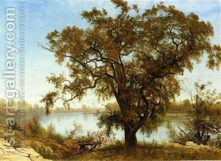 A View from Sacramento by Albert Bierstadt - Reproduction Oil Painting