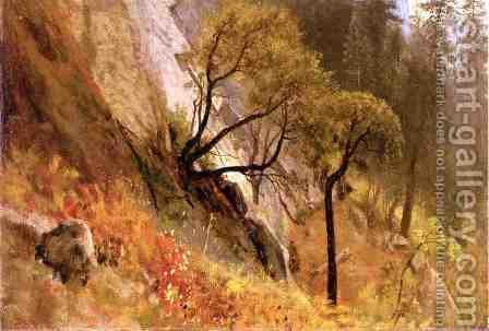 Landscape Study: Yosemite, California by Albert Bierstadt - Reproduction Oil Painting
