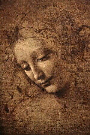 Leonardo Da Vinci reproductions - Female head (The Lady of the Dishevelled Hair) (or La Scapigliata)