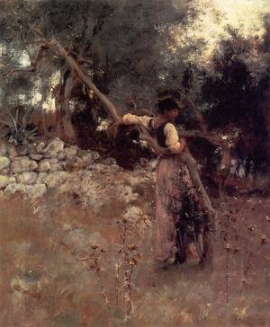 Reproduction oil paintings - Sargent - Capri Girl (or Among the Olive Trees, Capri)