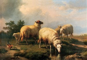 Sheep And A Chicken In A Landscape