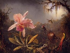 Famous paintings of Trees: Cattelya Orchid and Three Brazilian Hummingbirds