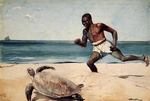Famous paintings of Turtles: Rum Cay