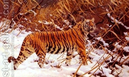 Siberischer Tiger In Einer Schneelandschaft (Siberian Tiger In A Winter Landscape) by Hugo Ungewitter - Reproduction Oil Painting