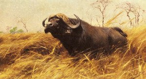 Famous paintings of Trees: An African Buffalo