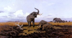In The Twilight, Elephants