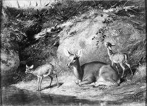 Reproduction oil paintings - Arthur Fitzwilliam Tait - Doe and Two Fawns