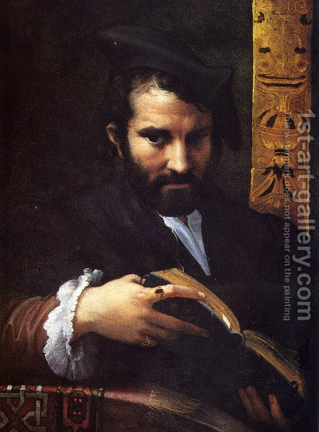 Portrait Of A Man With A Book by Girolamo Francesco Maria Mazzola (Parmigianino) - Reproduction Oil Painting