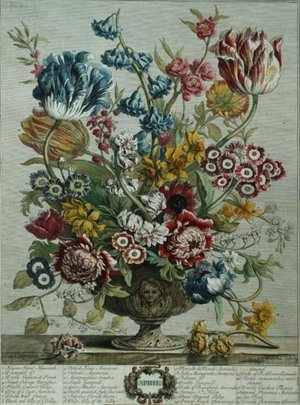 Naturalism painting reproductions: April, from 'Twelve Months of Flowers', by Robert Furber (c.1674-1756)