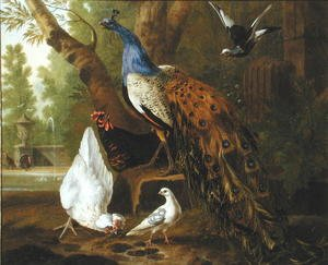 Naturalism painting reproductions: An Assembly of Birds in a Classical Park, 1719 2