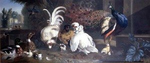 Naturalism painting reproductions: A Peacock, Chickens, Ducks and a Kingfisher