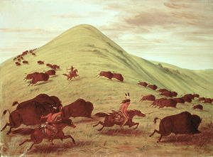 Famous paintings of Horses & Horse Riding: Sioux Indians hunting buffalo, 1835