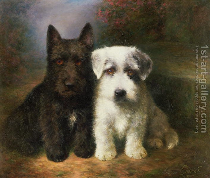 Huge version of A Scottish and a Sealyham Terrier