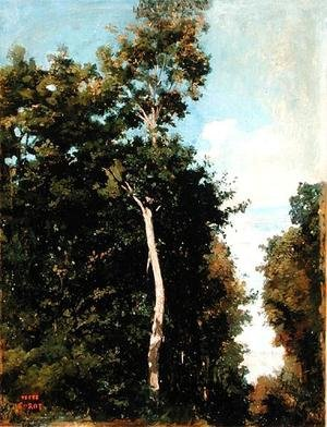 Reproduction oil paintings - Jean-Baptiste-Camille Corot - The Wood on the Cote de Grace in Honfleur