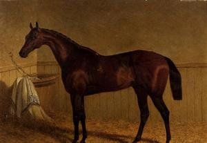Realism painting reproductions: 'Beeswing', a bay racehorse in a loosebox