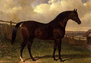 Famous paintings of Horses & Horse Riding: 'Emilius', a bay racehorse in a paddock