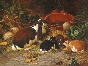 Realism painting reproductions: Fancy Rabbits, a Doe with her Young, 1863