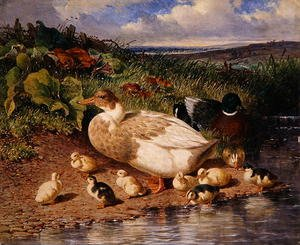 Famous paintings of Ducks: Ducks by a Stream, 1863