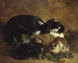 Famous paintings of Domestic Animals: Rabbits, 1852