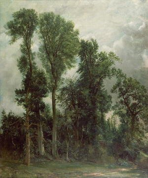 Reproduction oil paintings - John Constable - Trees at Hampstead