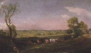 Reproduction oil paintings - John Constable - Dedham Vale  Morning, c.1811