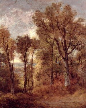 Reproduction oil paintings - John Constable - Woodland View in Suffolk
