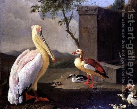 Oriental Birds by Adriaen Coorte - Reproduction Oil Painting