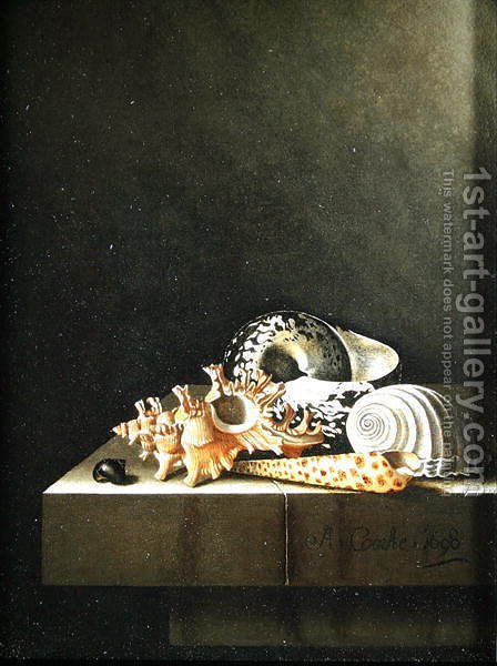 A still life of shells 1698 by Adriaen Coorte - Reproduction Oil Painting