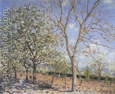 Plum and Walnut Trees in Spring by Alfred Sisley - Reproduction Oil Painting