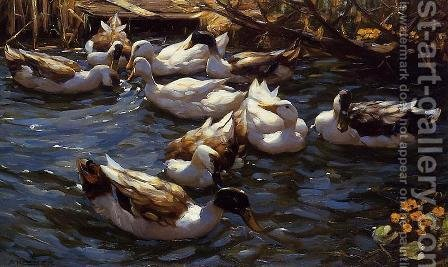 Ducks in the Reeds under the Boughs by Alexander Max Koester - Reproduction Oil Painting