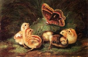 Reproduction oil paintings - Arthur Fitzwilliam Tait - Young Chickens