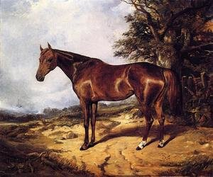 Reproduction oil paintings - Arthur Fitzwilliam Tait - Thoroughbred