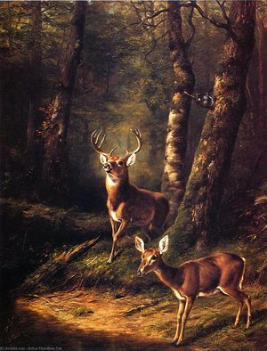 Reproduction oil paintings - Arthur Fitzwilliam Tait - The Forest: Adirondacks