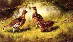 Reproduction oil paintings - Arthur Fitzwilliam Tait - Ruffed Grouse