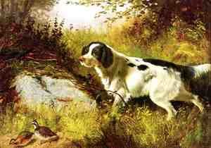 Reproduction oil paintings - Arthur Fitzwilliam Tait - Dog and Quail
