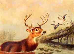 Reproduction oil paintings - Arthur Fitzwilliam Tait - Buck in a Marsh