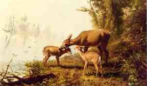 Reproduction oil paintings - Arthur Fitzwilliam Tait - Deer in the Woods
