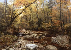 Brook in Autumn, Keene Valley, Adirondacks
