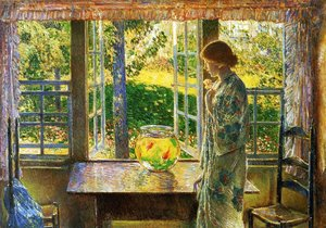 The Goldfish Window