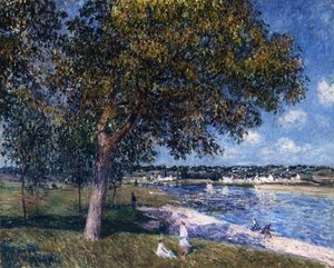 Reproduction oil paintings - Alfred Sisley - Walnut Tree in a Thomery Field