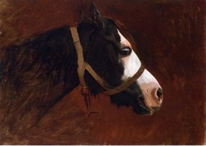 Reproduction oil paintings - Jean-Léon Gérôme - Profile of a Horse