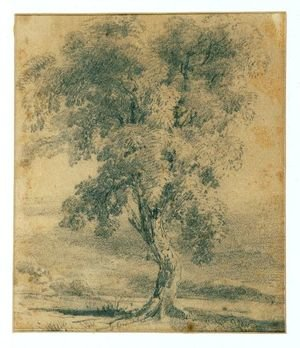Landscape with Tree