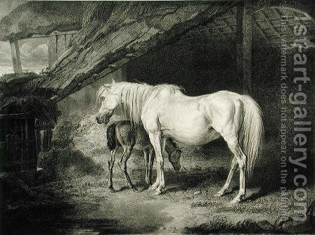 Primrose and Foal, from Celebrated Horses, a set of fourteen racing prints published by the artist, 1823-24 by (after) Ward, James - Reproduction Oil Painting